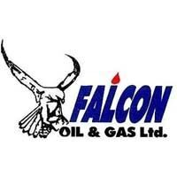 ТОО «Falcon Oil & Gas LTD»